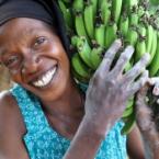 Tanzania, woman carrying banan...